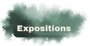 Les expositions du FAVA 2015