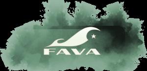 La navigation dans le site du FAVA